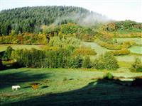 Paysage site chalets chalaux Morvan chalets Chalaux